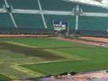 球场草皮屡遭演唱会损坏,不该让