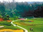 蒲江加速构建绿色产业体系 奋力打造美丽蒲江绿色典范