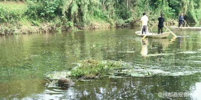 资阳安岳初中初中下河失踪洗澡当地正摸底搜答案试卷学生组织图片