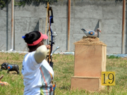 靶子是野猪等动物模型 这种射箭比赛你见过吗?
