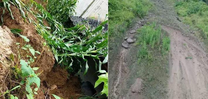 宜宾发生滑坡 村干部一个动作救6条命