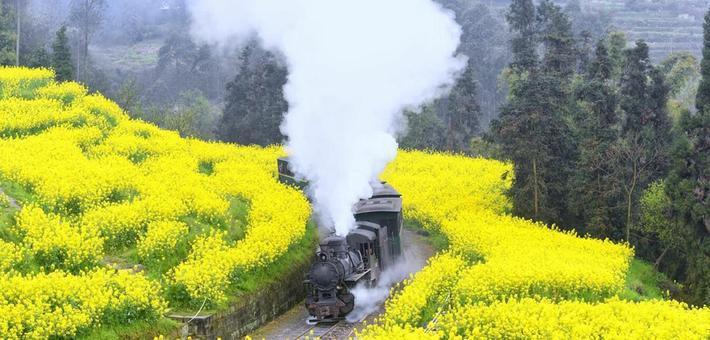 这是一列开往春天的小火车
