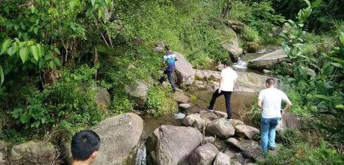 村民偶遇黑熊 藏身大树3小时获救
