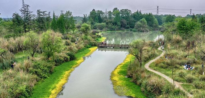 最美湿地四月天,踏青景色尽芳菲