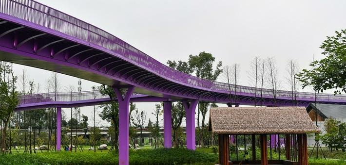 """环城生态公园新增粉紫色""""飘带桥"""""""