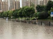 注意安全!暴雨造成自贡城区部分路段积水