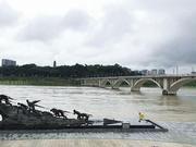 受上游强降雨影响 15日嘉陵江南充城区段水位上涨明显