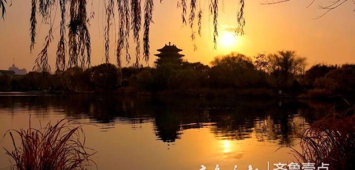 赶在太阳落山前 收获一组大明湖的靓照