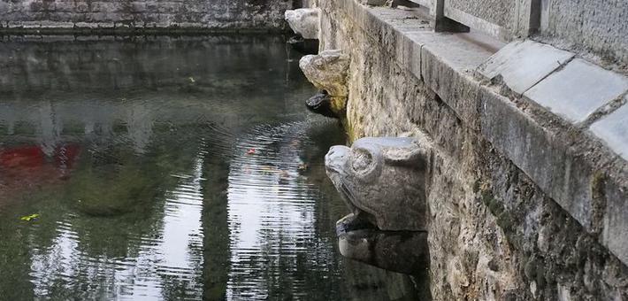 黑虎泉西侧虎头停喷 地下水位还在下降
