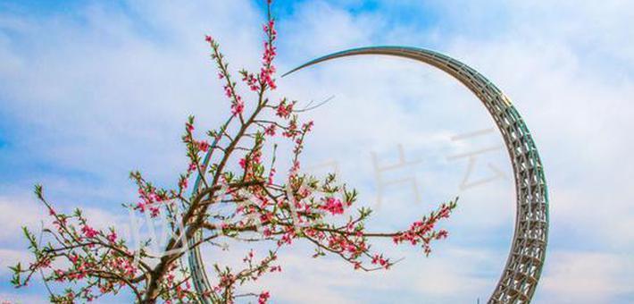 """春暖花开时 我在""""烟台蓝""""里等你"""
