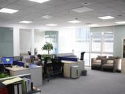 山东青岛率先推出外资企业在线跨国注册服务