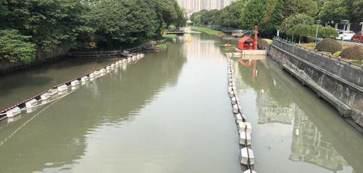 上海4条持续黑臭河道完成整改