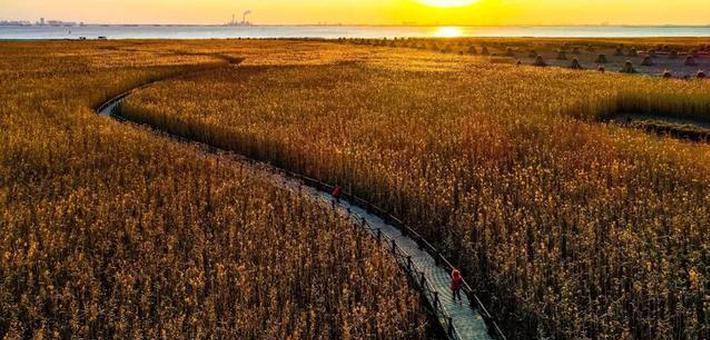 西沙湿地元宵节起恢复开放