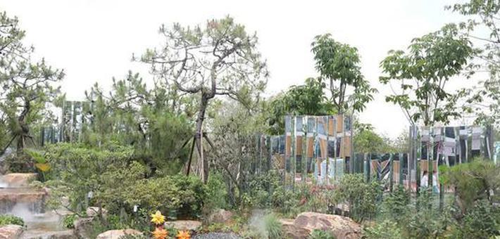 探索花博会这十座世界级花园