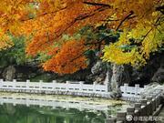 冬近秋去 晋祠景色愈发斑斓