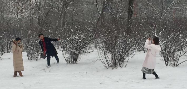 山西各地雪景如画