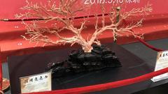 第十四届文博会今日开幕 顶级珊瑚首次参展亮相台湾馆