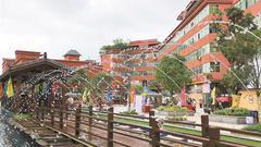 精雕百年小镇 细述千年 光明红木小镇传统文化节开幕