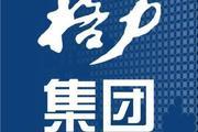 王健林投五亿给董明珠造车,网友:车标好像梅花五