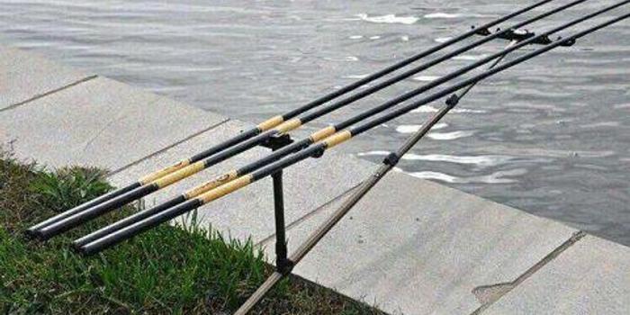 共同盗窃他人钓鱼竿,后果会怎样?