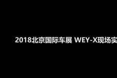 WEY-X新能源