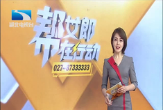 东风启辰D60进入武汉租车市场,打破按天计费,采取分时租赁