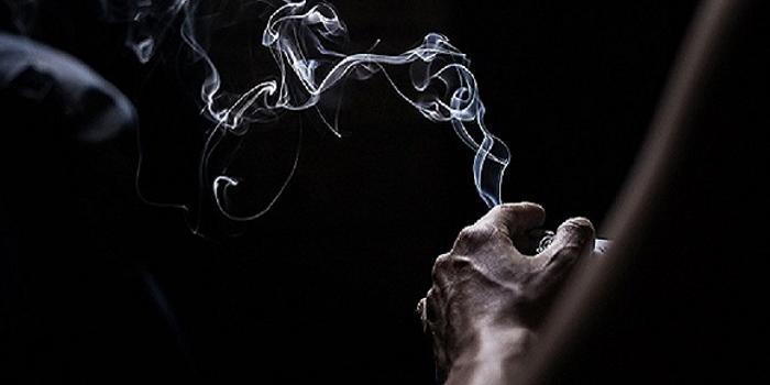 罗永浩微博发声:将为小野设计电子烟