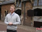 英国王室添了新宝宝 哈里王子:向天下母亲致敬