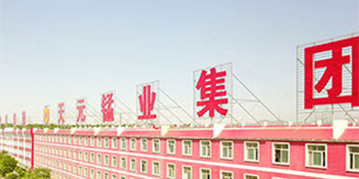 天元锰业部分股权出质给国资 宁夏首富获国资驰援