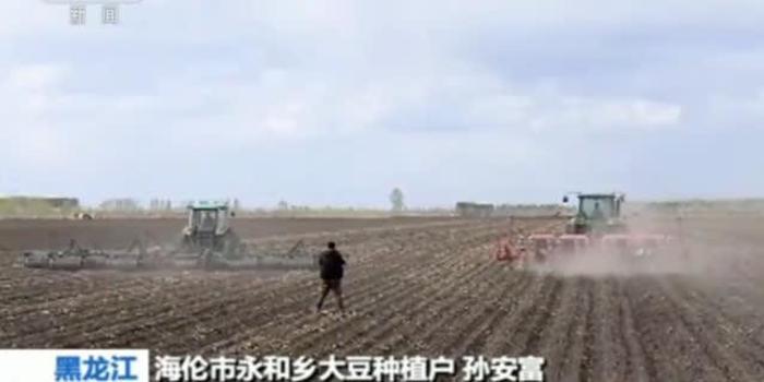 各地农民响应大豆振兴计划 今年种植面积大幅增加