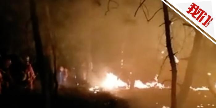 七旬老汉烧包谷杆引发山火 过火面积约2公顷