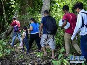 """墨西哥:大批中美洲移民""""翻山越岭""""向美国进发"""