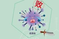 屠呦呦团队深入研究抗疟机理 攻坚青蒿素抗药性难题