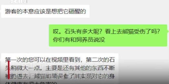 北京动物园回应游客砸熊猫 目前状况良好 园方加强巡查