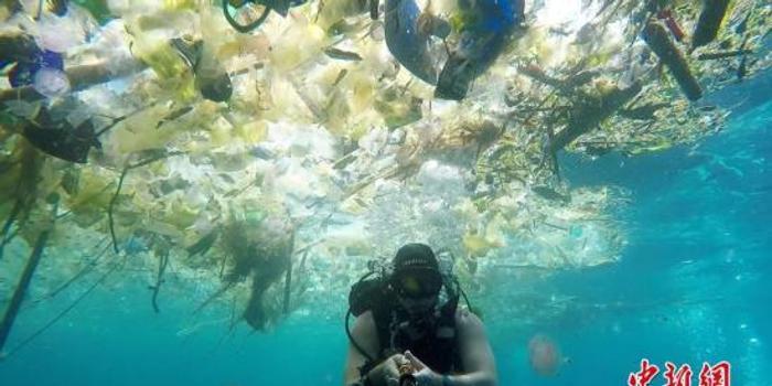 垃圾的真相:塑料瓶降解要450年 垃圾产量该国居首
