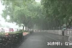 雨季开车必看!这些事项一定要注意