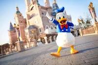 评论:上海迪士尼禁带外食与饭店禁带酒水有区别吗?