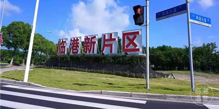 """为更好参与国际经济 中国派出""""临港""""这名生力军"""