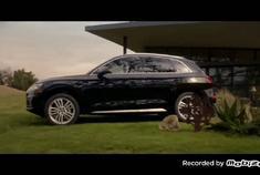 2019 奧迪Audi Q5 運動型多用途車