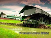 视频-球场攻略:美巡揭幕战绿蔷薇赛举办地TPC老白