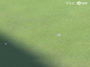 视频-绿蔷薇赛决赛轮最佳球 涅曼18号洞小鸟冠军推