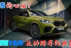 披着BMW X6M的皮,却匹配M5的心脏?
