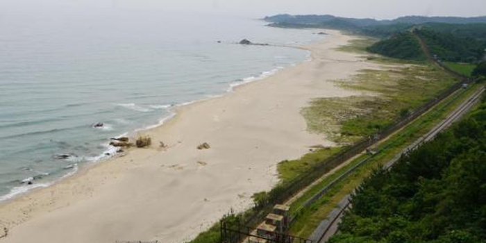 韩拟将非军事区申遗 韩总统曾称其是和平的象征