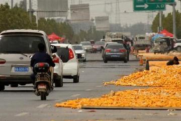 大马路上晒菜籽,不料被现代车碾压而过,车主:马路是你家开的?