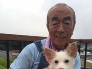 日本老牌艺人志村健新冠肺炎病情加重,已安装人工肺治疗