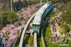 Monorail train runs past blooming flowers at Chongqing metro line 2