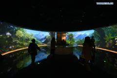 Students visit Chengdu Giant Panda Museum in Chengdu