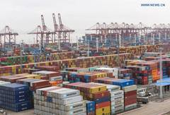 Ningbo Zhoushan Port sees cargo throughput reach 1.172 billion tons in 2020