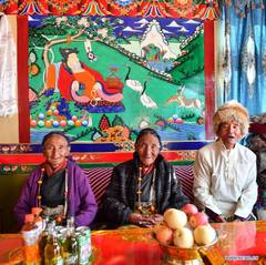 Resident in Tibet embarks on whole new life after democratic reform