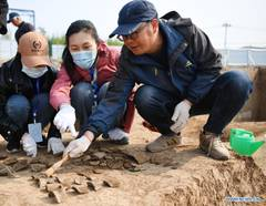 In pics: archeology in Anyang, C China